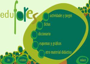 edufores